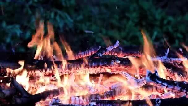 jasné jazyky horký plamen v pánve