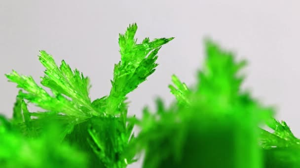 bright green translucent crystal of natural mineral oxide