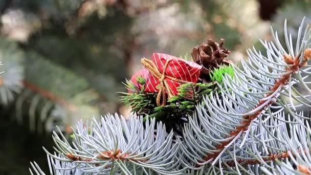 Vánoční ozdoby na slavnostní borovice v předvečer události
