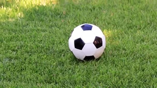 szép futball-labda, a zöld fű, gyep-játéktér
