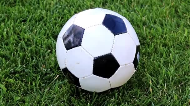 lovely soccer ball on the green grass of a lawn playing field