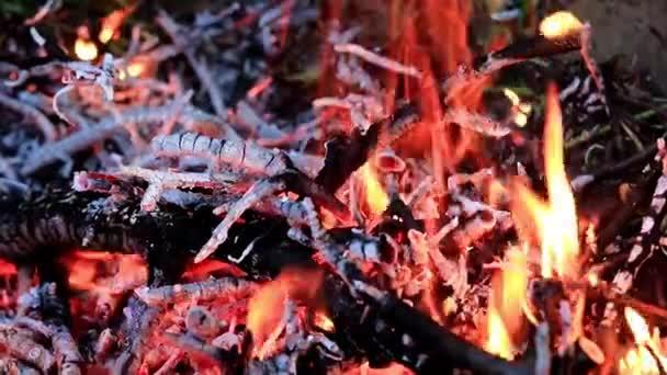 plameny a oheň oheň jako přírodní katastrofa