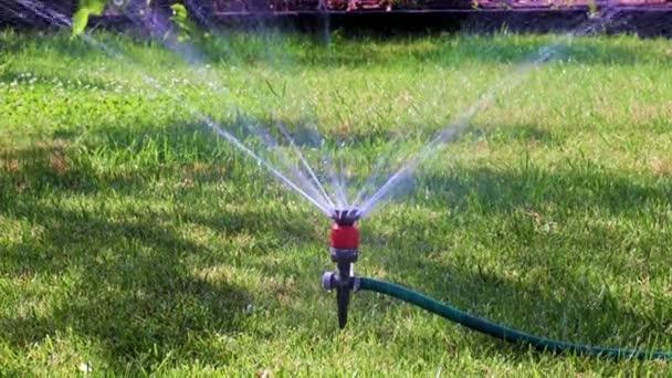 Stříkání vody na povrch trávy