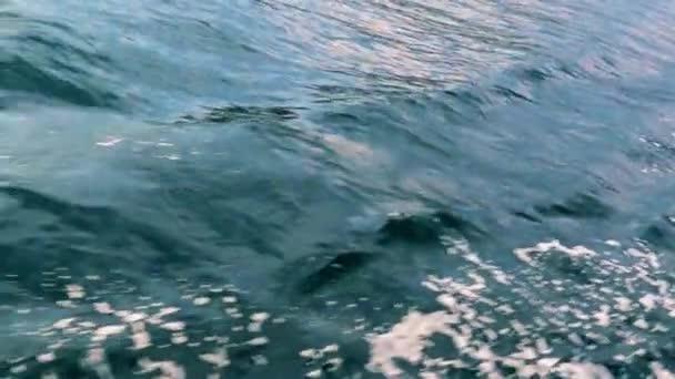 stopa z pohybu člunu na mořské hladině