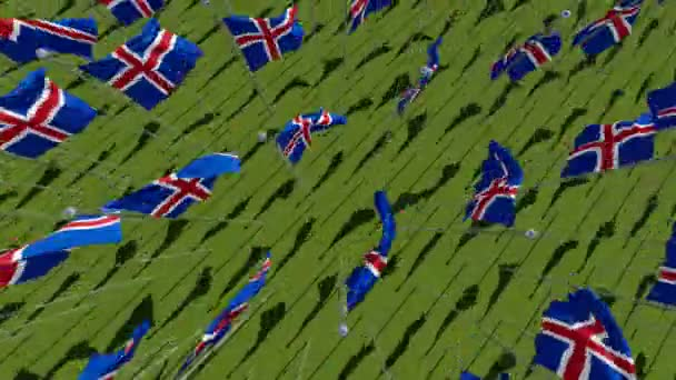 Many national flags of the Iceland waving on wind in green field. Three dimensional rendering 3D animation. View from above.