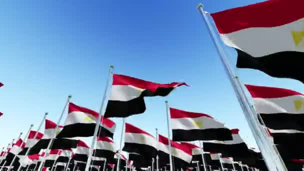 Many National Flags of Egypt against blue sky.  Three dimensional rendering 3D animation.