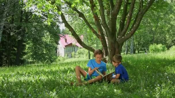 Two adorable cute caucasian boys, sitting on green grass in the garden, reading a book, educating themselves and having fun
