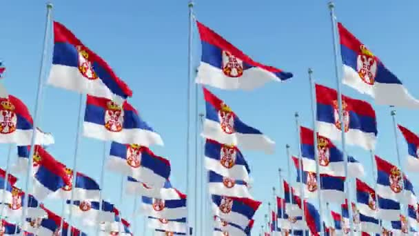Many flags of Serbia against blue sky. Three dimensional rendering 3D animation.