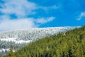 Zima se sněhem v Krkonoších, Česká republika