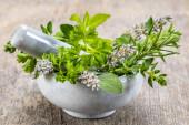 Alternativní medicína s léčivými rostlinami