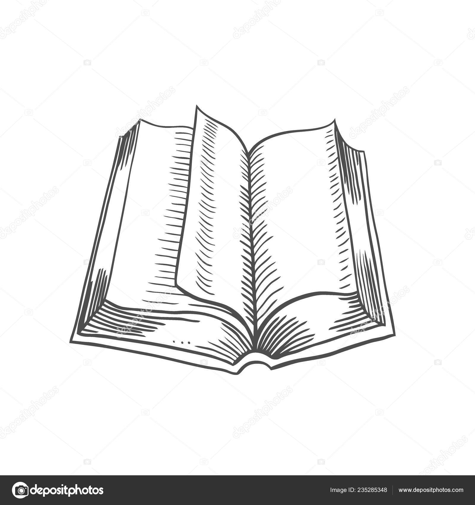 How to draw an open book standing up | Open Book Isolated