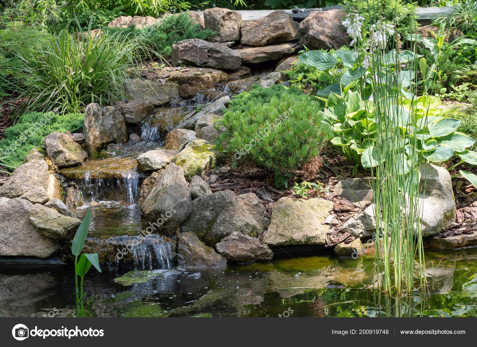Tuin waterval tuin vijver met water bloemen mooie vijver for Tuin en vijver
