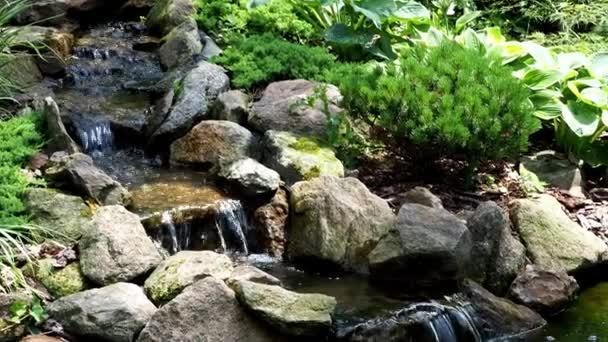 Laghetto Con Cascata Da Giardino : Cascata del giardino stagno del giardino con fiori acqua bellissimo