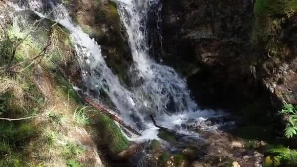 Erdei patak vízesés a természet