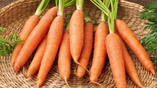 Fresh carrot in basket, root vegetable.