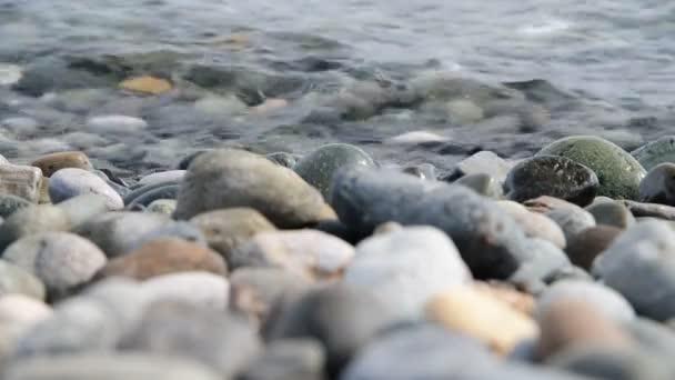 Fragment z moře pobřeží s oblázkovou pláží