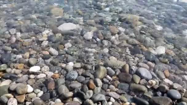 Fragment z pobřeží Černého moře s oblázkovou pláží