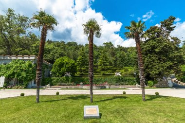 Koreiz, Crimea - July 7. 2019. Palm trees planted by Stalin, Roosevelt and Churchill during the Yalta Conference in 1945