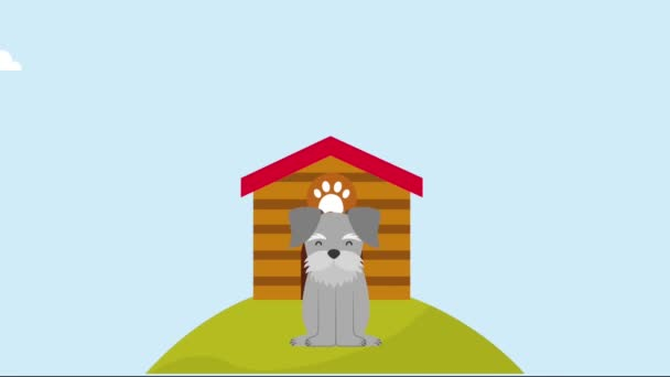 cute dog in the hill with wooden house