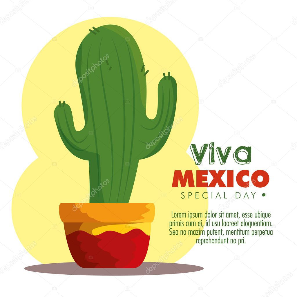 cactus plant to traditional mexico event