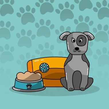 dog pet sitting with bed and bowl food