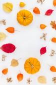 Rám vyrobený z dýně sušených květin a listů