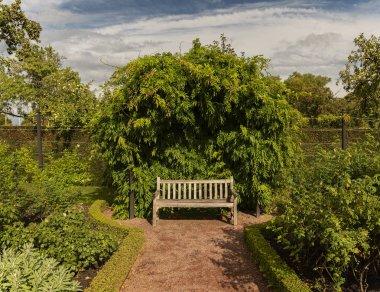 Wooden garden bench in lush green landscaped garden. stock vector