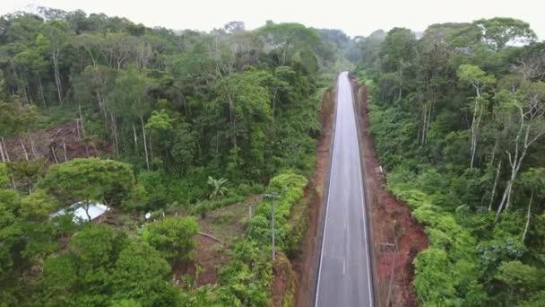 video, Ecuador-i országút légi kilátása, esőerdő kunyhóval
