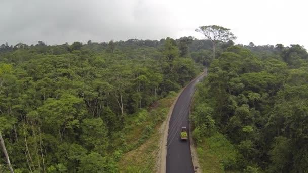 video, silnice a auto v lese se stromy, letní sezóna