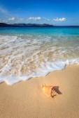 Lasturu na písečné pláži jednoho z ostrovů na Bvi s mraky a hory v pozadí