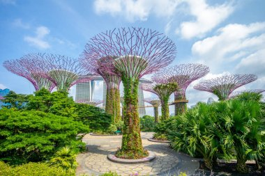 Landscape of Gardens by the Bay in singapore stock vector