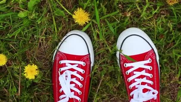 Frauenfüße in roten Turnschuhen stehen auf dem Gras mit wachsendem Löwenzahn