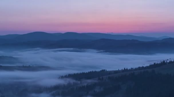 morning in the Carpathian mountains. Dynamic fog in the middle of the mountains