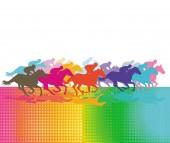 Vágta lóverseny, versenyló, Racing