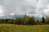 Fotografie Panoramatický pohled svěží horské krajiny pod zamračenou oblohou