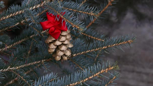 Gilded pine cone in Christmas tree