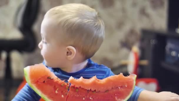 beautiful little boy in blue jacket eating a big piece of red fresh watermelon and then turn back close up view video in 4K