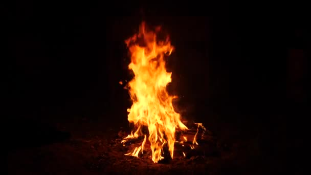 Burning fire. Bonfire. Close Up of flames burning on black background, slow motion