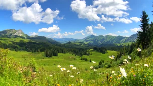 Summer time mountain panoramic landscape