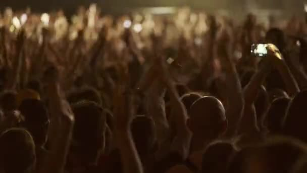 Fans jubeln bei Open-Air-Musikfestival