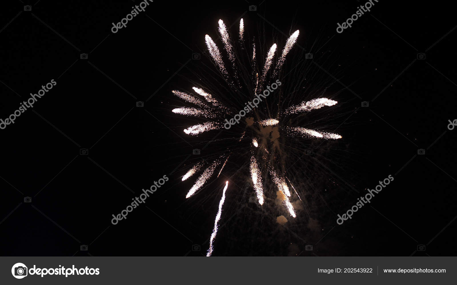 Beautiful Bright Fireworks Explosion In The Night Sky Like A Flower