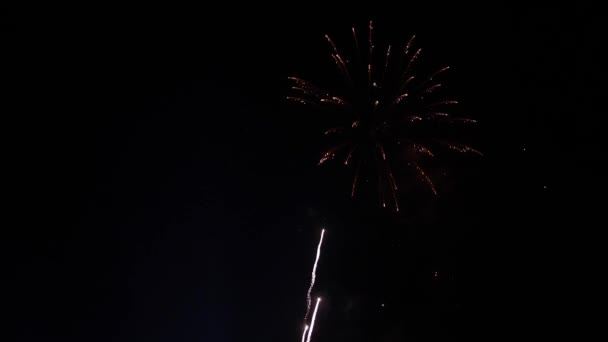 Amazing fireworks explosion in the night sky. slow motion. 3840x2160