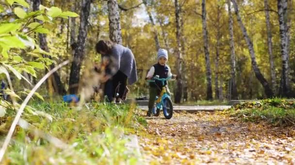 Happy little boy on a bicycle in autumn park during falling leaves. Happy childhood. slow motion. 3840x2160
