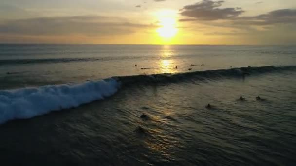 Ocean. People. Surfing. Water. Nature. Sunrise. Aerials. 4k. Drone