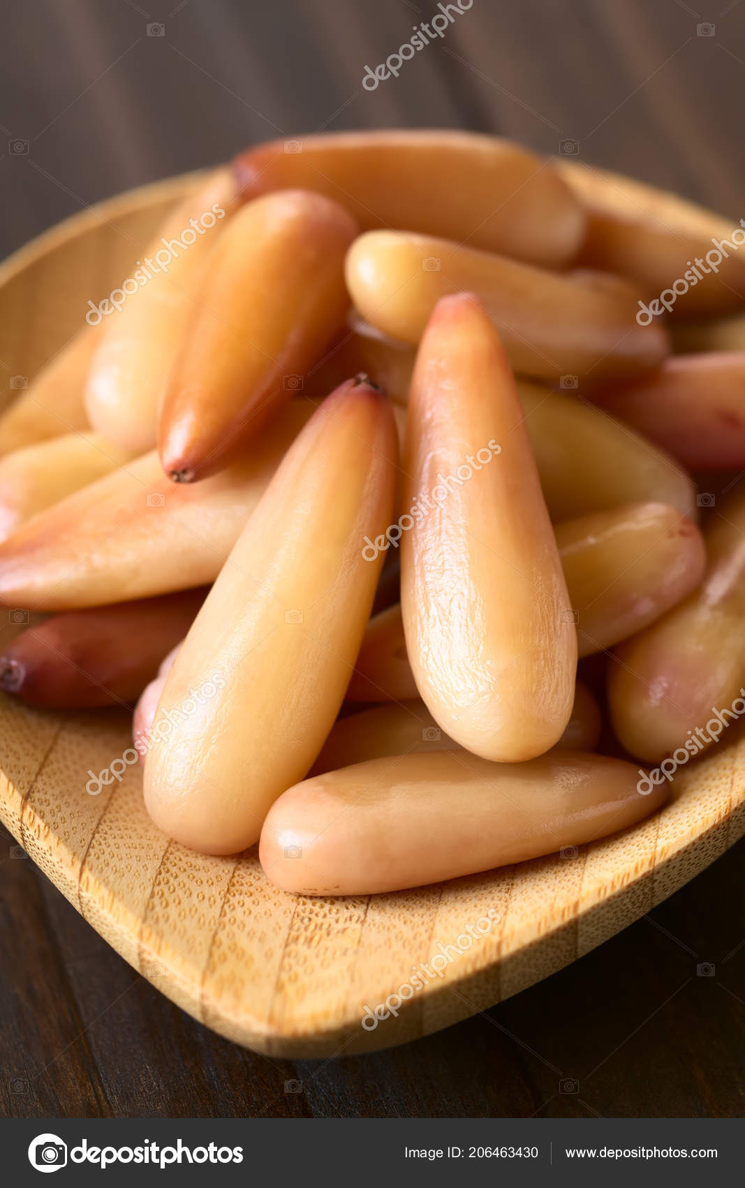 Peeled Cooked Chilean Pinones Pine Nuts Chilean Pine Monkey Puzzle