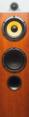 floorstanding audio speaker, close-up view