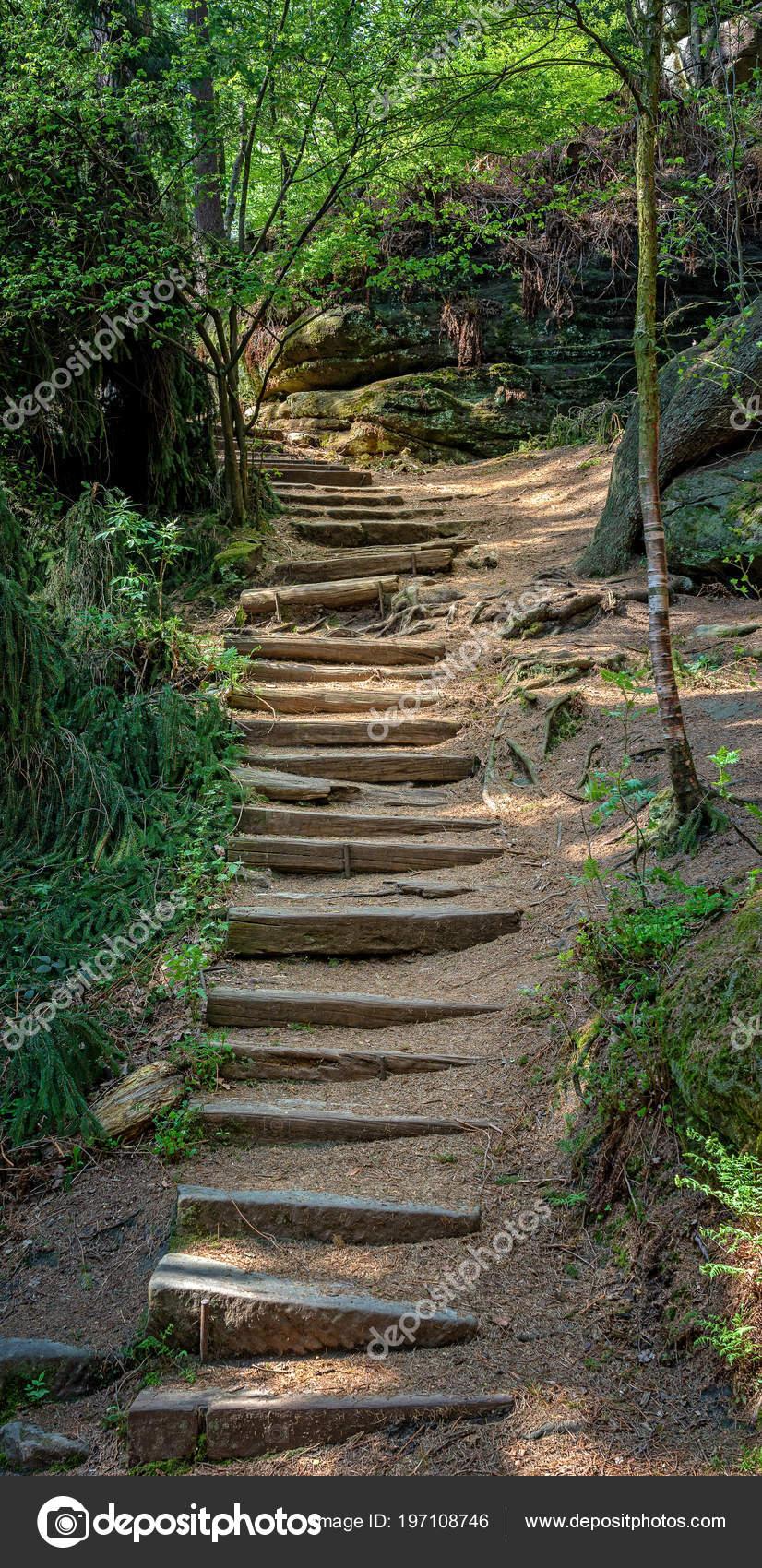 Treppen Aus Stein Auf Einem Wanderweg Wald Sachsen ...