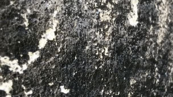 Close up of stone surface dolly shot