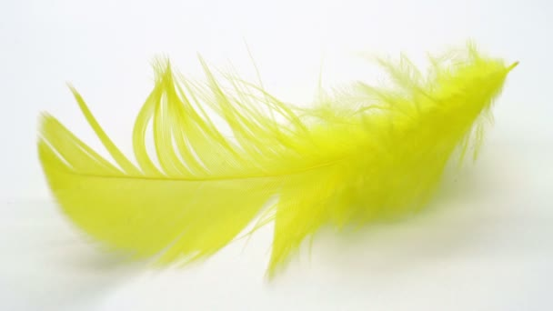 Gelbe Feder in Zeitlupe