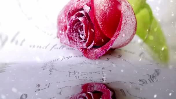 Havazik a vörös rózsa tükröződik a vízben